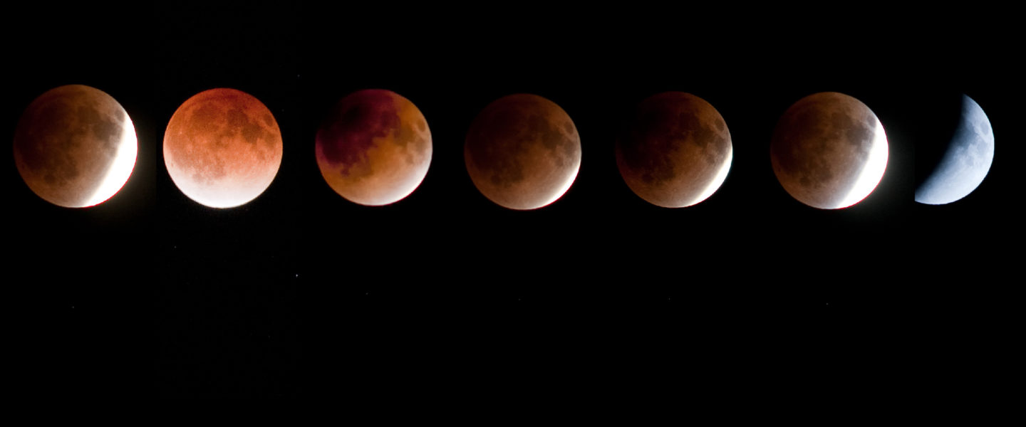 Total Lunar Eclipse with CIERA Astronomers